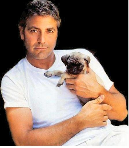 THE ETERNAL BACHELOR; GEORGE CLOONEY