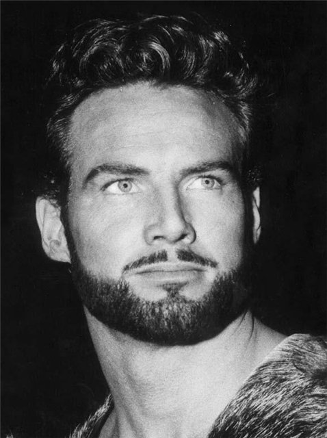 stevereeves3