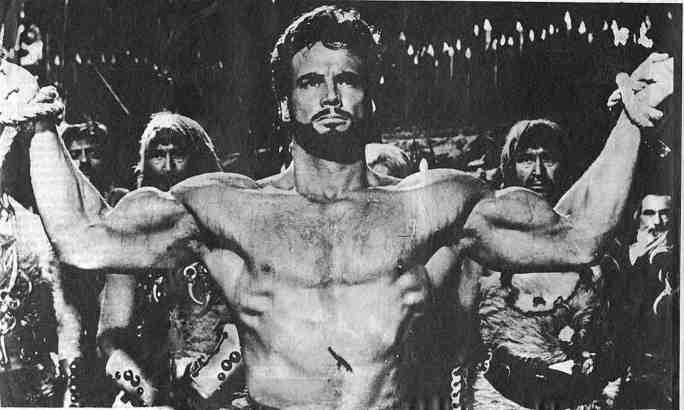 stevereeves8